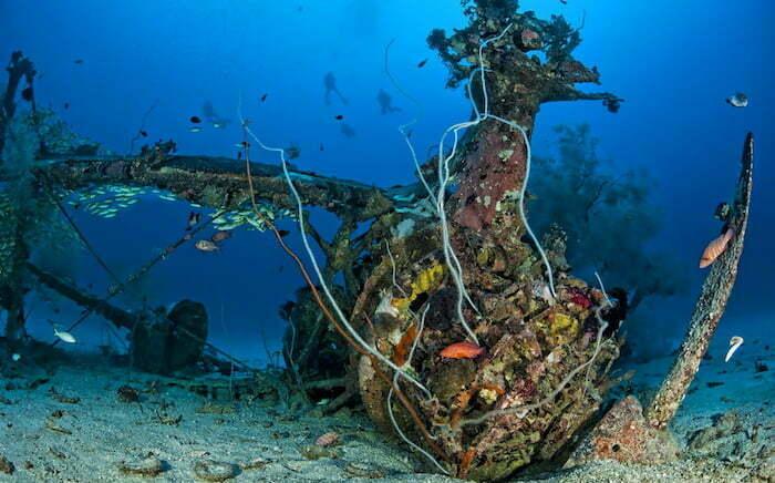 Deep Pete Papua